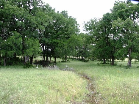 Land for sale in tx