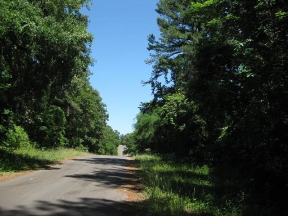 Texas land for sale smith county